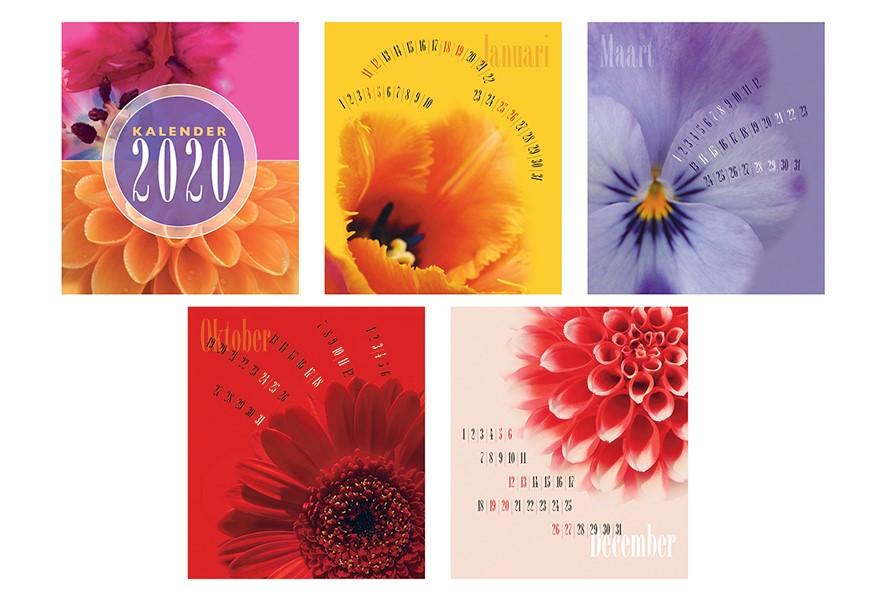 kalender 2020 willeke vrij vormgeving